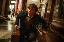 Fantastic Beasts and Where to Find Them 4K Ultra HD 1