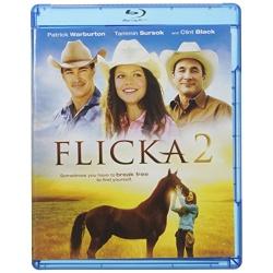 Flicka 2 Blu-ray Cover