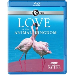 Nature: Love in the Animal Kingdom Blu-ray Cover