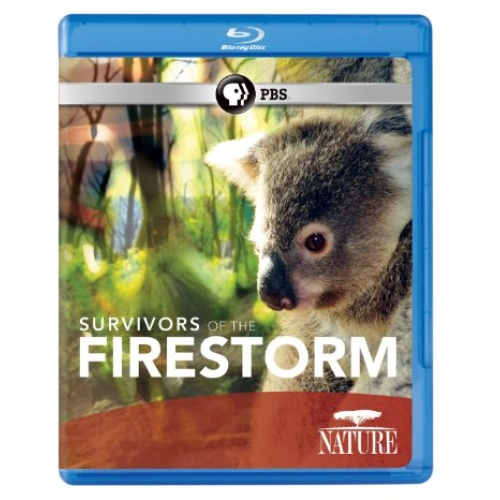 Nature: Survivors Of The Firestorm Blu-ray Disc Title