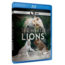 Nature: The White Lions Blu-ray Cover