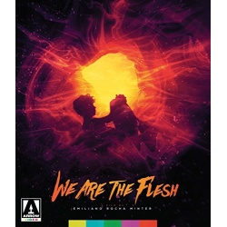 We are the Flesh Blu-ray Cover